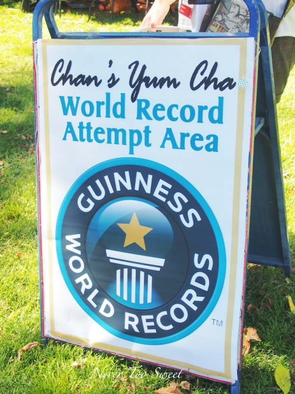 Attempting to beat the Guinness World Record