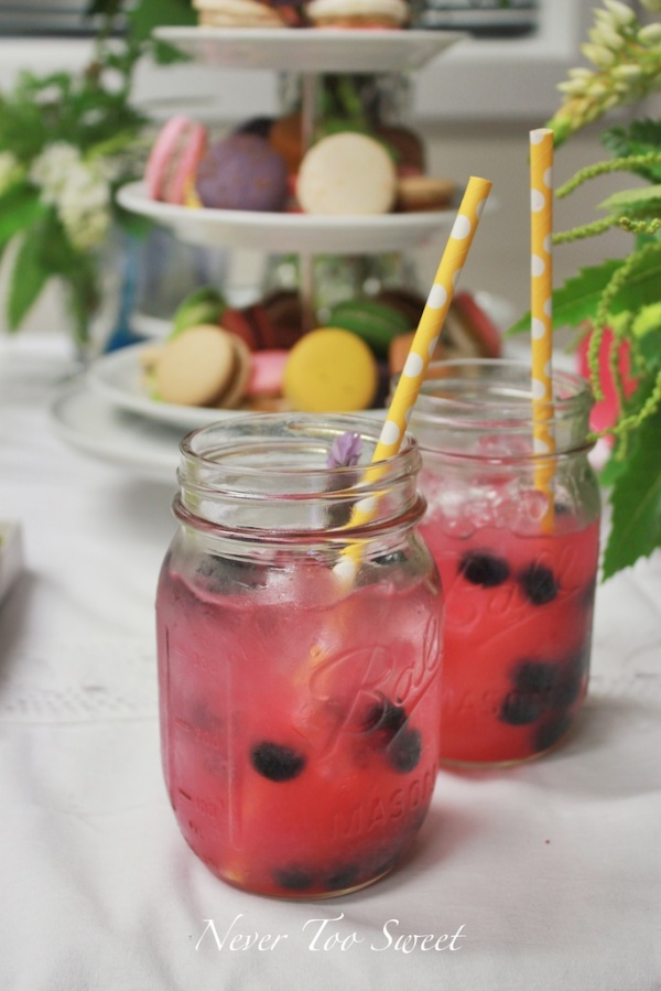Blueberry Lemon Cocktail