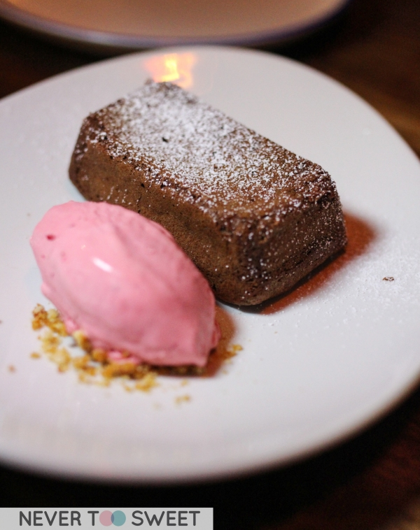 Chocolate Bar with Raspberry Sorbet